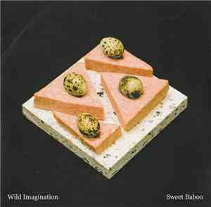 Sweet Baboo - Wild Imagination download