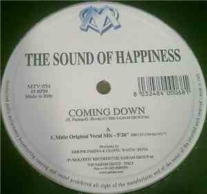 The Sound Of Happiness - Coming Down